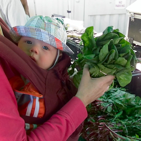baby-spinach-1-1