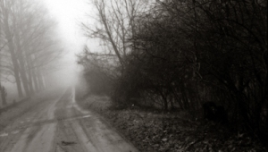 road-10